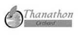 logo_thanathon